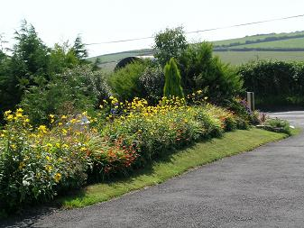 Paved entrance to Homeleigh, red roses, wales. Near Tenby, Saundersfoot and Pendine.